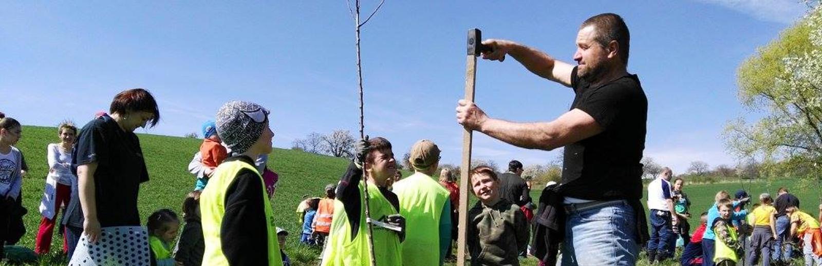 Milión stromů pro jižní Moravu