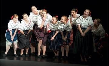 Folklorní festival, Dambořice