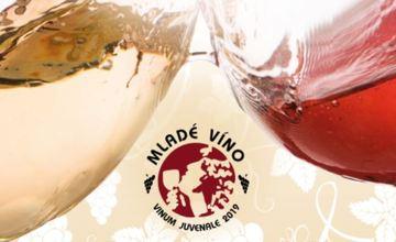 VIII. Holubický košt vín