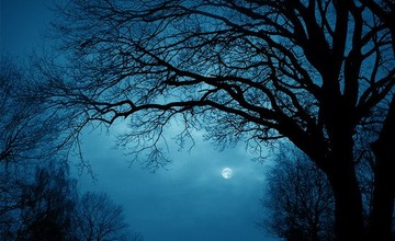 Letní noc, Rašovice